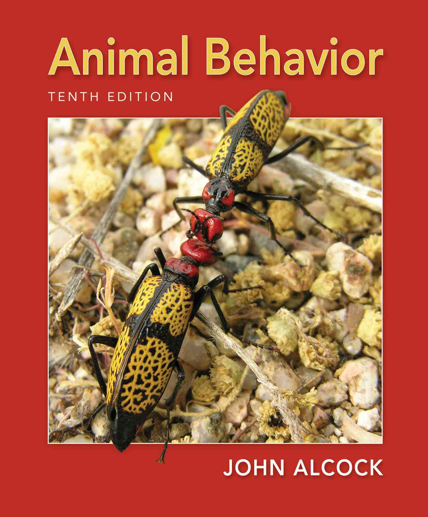 Animal Behavior By Alcock, John